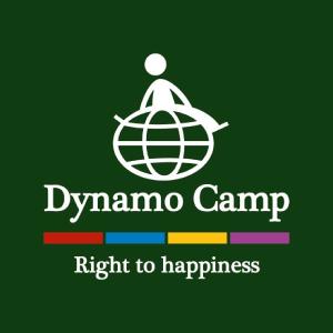 logo-dynamocamp-verde
